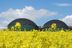Biogas-Technologie
